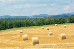 Mowed cornfield with straw bales Royalty Free Stock Photos