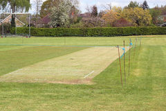 Mowed cricket pitch. Stock Images