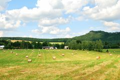 Mowed farm field with bales of hay. Countryside Royalty Free Stock Photos