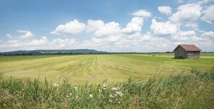 Mowed field and hut. Mowed green field and wooden hut, agricultural background. blue sky with clouds Royalty Free Stock Photos