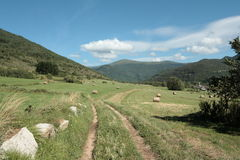 Mowed field in Pyrenees Royalty Free Stock Image