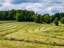 Mowed field Royalty Free Stock Images