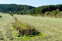 Mowed grass in a meadow in a valley near Medebach Stock Photo