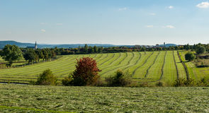 Mowed grass on meadows in Medebach Stock Images