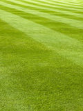 Mowed grass pattern Royalty Free Stock Photography