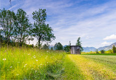 Mowed grass at rural tyrol meadow Royalty Free Stock Photos