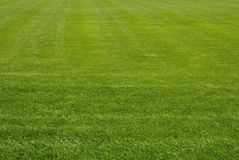 Free Mowed Lawn Stock Image - 2199571