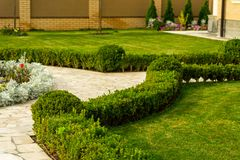 Mowed lawns with shrubs near the stone walkway stock photography