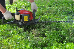 Mower grass cutter Stock Photography
