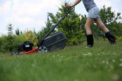 Mower Royalty Free Stock Images