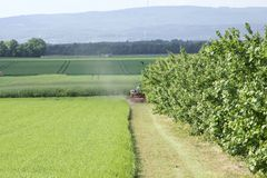 Mowing at the Cherry grove Stock Images
