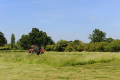 Mowing the grass Royalty Free Stock Photography