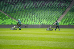Mowing grass in a football stadium Stock Images