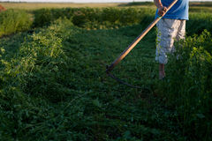 Mowing grass Royalty Free Stock Photo
