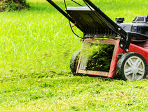 Mowing grass. Worker mowing grass with mowing machine Royalty Free Stock Photos