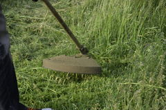 Mowing green grass using a fishing line trimmer Royalty Free Stock Photos