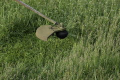 Mowing green grass using a fishing line trimmer Royalty Free Stock Photography