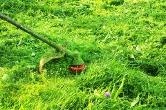 Mowing green wild grass field using brush cutter mower or power tool string lawn trimmer. To mow a grass with the trimmer. royalty free stock photography