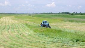Mowing hay with stork inspection on a water-meadowading to in Chervlene village, Sumy Oblast, Ukraine stock footage