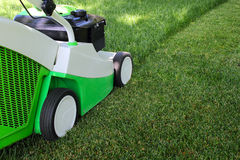 Mowing the lawn. Cut grass by green-white lawnmower Royalty Free Stock Photo