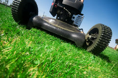 Mowing the lawn Stock Image