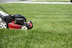 Mowing the lawn in the front yard Stock Image