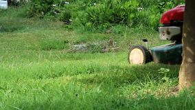Mowing the lawn. Gardener mowing the lawn with motor lawnmower stock footage