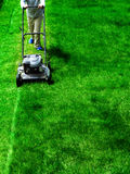 Mowing Lawn Grass Stock Photography