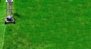Mowing Lawn Grass Royalty Free Stock Photography