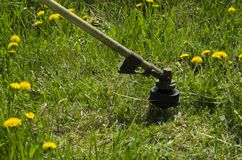 Mowing lawn royalty free stock photos