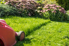 Mowing the lawn. A mower on a green lawn Royalty Free Stock Photography
