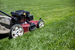 Mowing the lawn outdoors Royalty Free Stock Image
