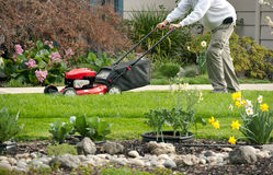 Mowing the lawn on a spring day Stock Images