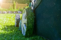 Mowing lawns. Lawn mower on green grass. Mower grass equipment. Mowing gardener care work tool. Close up view. Sunny day. Soft lig royalty free stock photography
