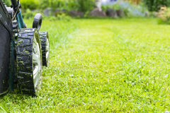 Mowing lawns, Lawn mower on green grass, mower grass equipment, mowing gardener care work tool, close up view, sunny day Stock Photo