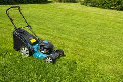 Mowing lawns Lawn mower on green grass mower grass equipment mowing gardener care work tool close up view sunny day. Stock Photos