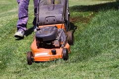 Mowing the meadows Stock Image