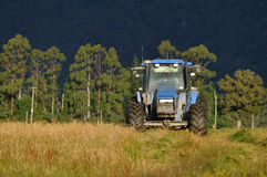 Mowing pasture. Tractor mowing pasture for silage, West Coast, South Island, New Zealand Royalty Free Stock Photo