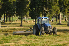 Mowing pasture Stock Photos