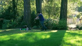 Mowing in the shadow of pine trees. Mowing the lawn along pine tree trunks stock video footage