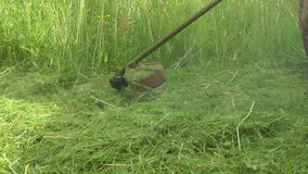 Mowing. stock video