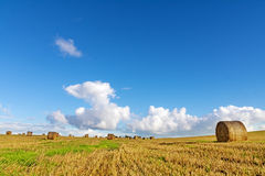 Mown field with round straw bales under a blue sky with clouds Stock Photo