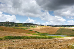 Mown Field. Mown Wheat Field on the Hills in Sicily Royalty Free Stock Photography