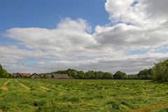 Mown grassland Royalty Free Stock Photo