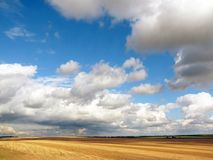 Mown wheat field and a beautiful sky Royalty Free Stock Image