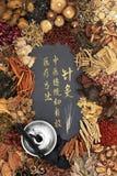Moxibustion terapi med kinesiska örter royaltyfri fotografi