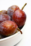Moyer Prunes stock images