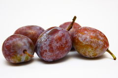 Moyer Prunes Royalty Free Stock Photography