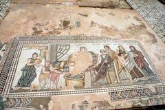 Mozaïek bij huis Theseus - Paphos, Cyprus Royalty-vrije Stock Foto's