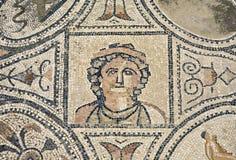 mozaik volubilis Obraz Royalty Free